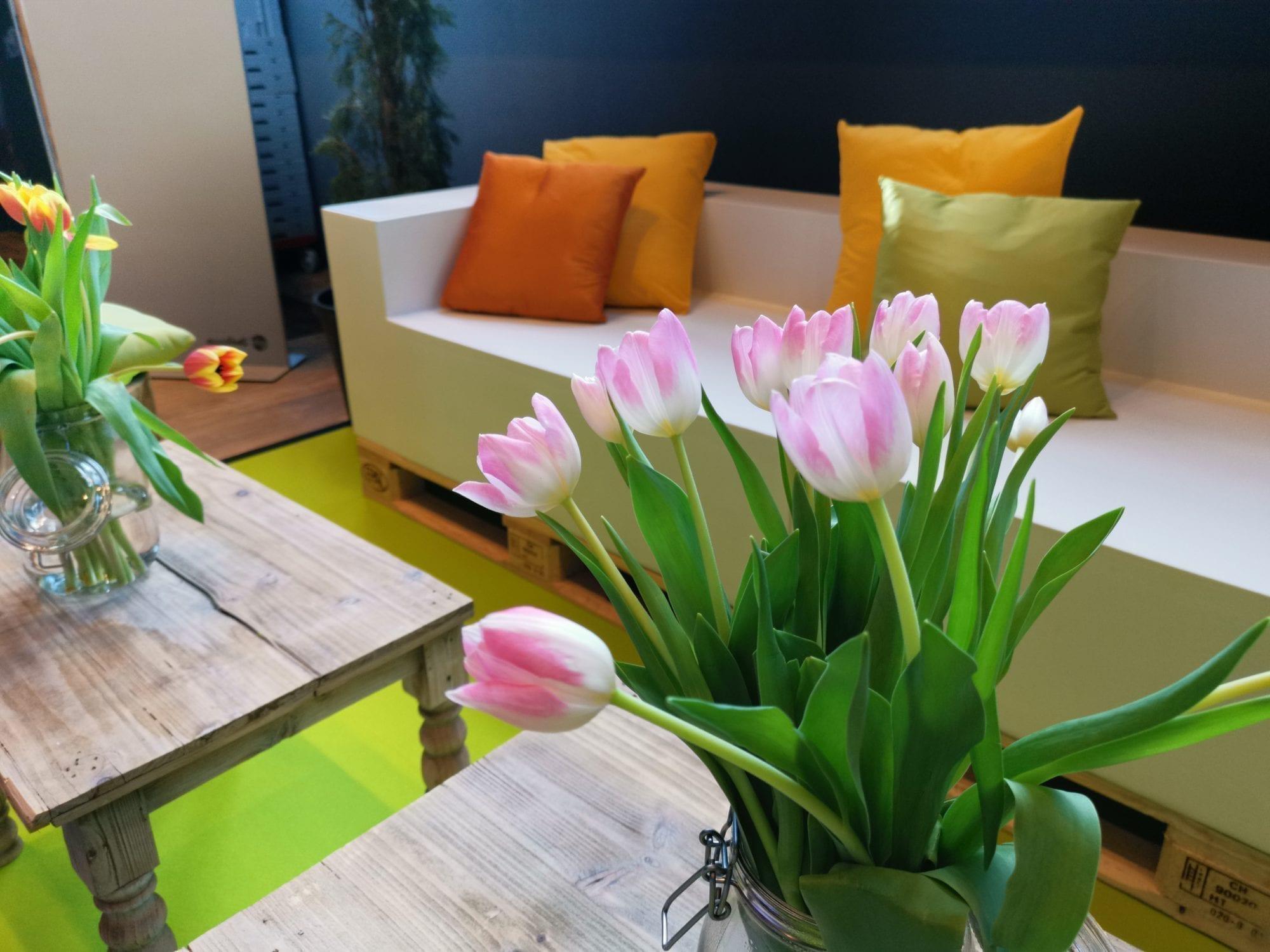 Ascona mieten rent-a-lounge 4
