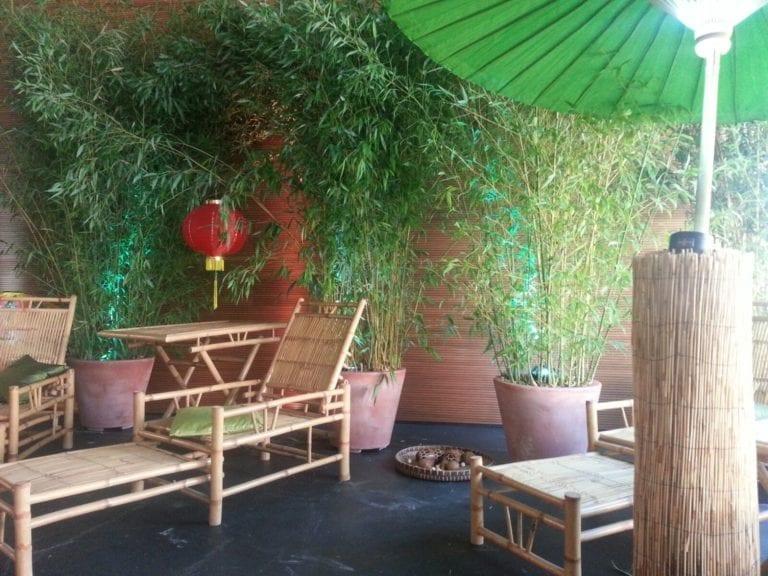 bamboo liege mieten rent-a-lounge 3