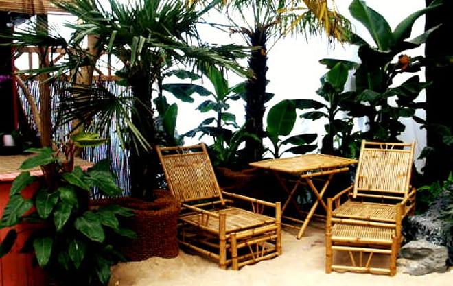 bamboo liege mieten rent-a-lounge 5