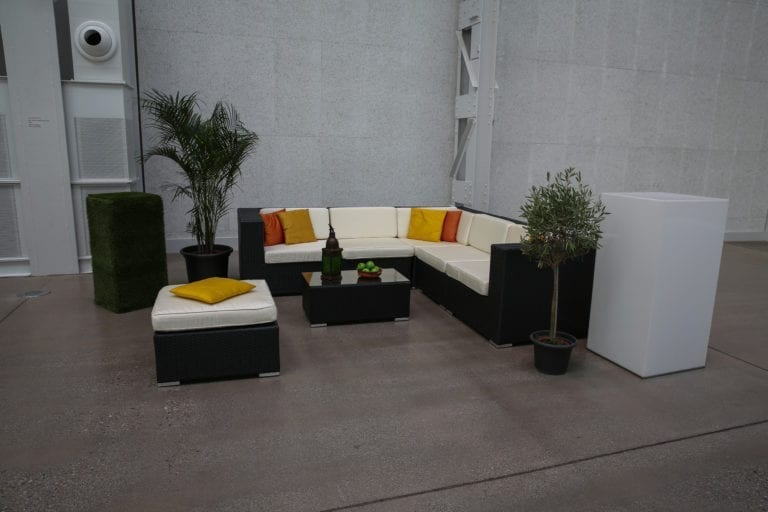 pflanzen mieten rent-a-lounge 7