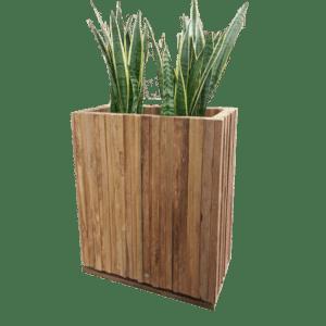 pflanzen - Raumteiler Wood mieten rent-a-lounge