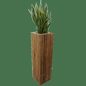 pflanzen - Stehkube Wood mit Sansiveria mieten rent-a-lounge