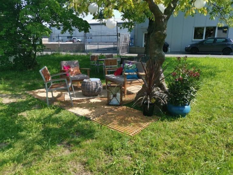 deko bäume mieten rent-a-lounge 14