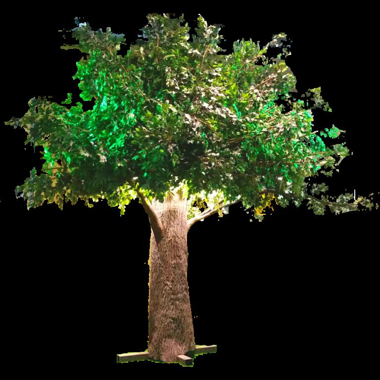 deko bäume mieten rent-a-lounge