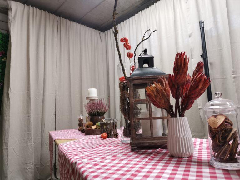 wentex system mieten rent-a-lounge 5